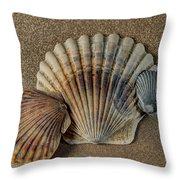 Shells 1 Throw Pillow