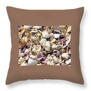 Shells Aplenty Throw Pillow