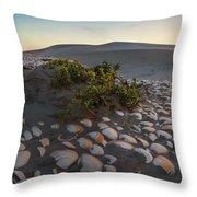 Shells At Desert Throw Pillow