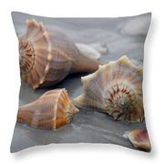 Shells For Barb Throw Pillow