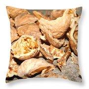 Shells Of Nut Throw Pillow