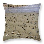 Shells On The Beach Throw Pillow
