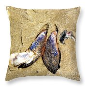 Shells On The Beach Of Jekyll Throw Pillow