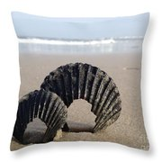 Shells Throw Pillow by Stephanie  Varner