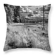 Shepard Lake Throw Pillow