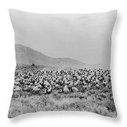 Shepherd And Flock, C1942 Throw Pillow