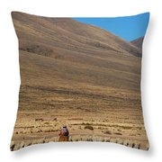 Shepherding Throw Pillow