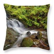 Shepperd's Dell Falls Throw Pillow