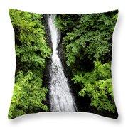 Shepperd's Dell Falls, Oregon Throw Pillow