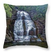 Shequaga Falls Throw Pillow
