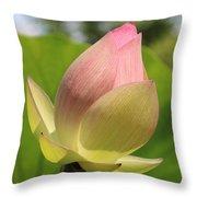 Sherbert Flower Throw Pillow