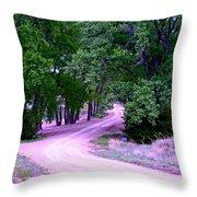 Sheridan Road Throw Pillow