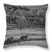Shh... Bw Throw Pillow