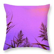 Shift In Perception Throw Pillow