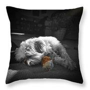 Shih Tzu Sleeping In The Sun Throw Pillow
