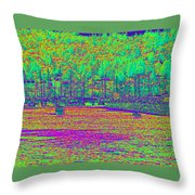 Shilshole Bay Marina Throw Pillow
