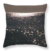 Shimmer Throw Pillow
