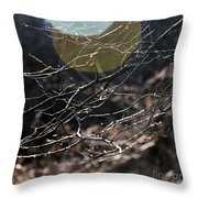 Shimmering Branches Throw Pillow