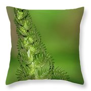 Shimmering Fern Throw Pillow