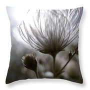 Shimmering Flower I Throw Pillow by Ray Laskowitz - Printscapes