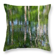 Shimmering Reflection Throw Pillow