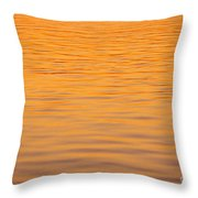 Shimmering Surface Throw Pillow