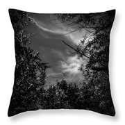 Shimmering Tree Branches Throw Pillow