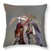 Shimmering Wings- Dragonfly Throw Pillow