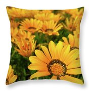 Shine Brighter Together Throw Pillow