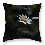 Shine On Me Throw Pillow