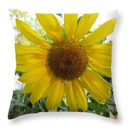 Shine Sunflower Shine Throw Pillow