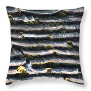 Shingles Throw Pillow