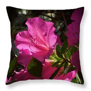 Shining Azalea Throw Pillow
