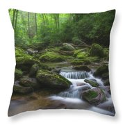 Shining Creek Throw Pillow