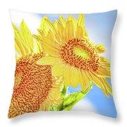 Shining Sunflowers Throw Pillow