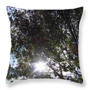 Shinning Sun Throw Pillow