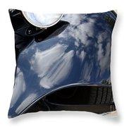 Shiny Fender Throw Pillow