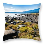Ships Point Throw Pillow