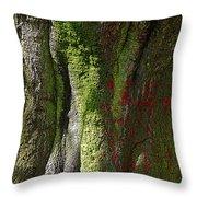 Shire Throw Pillow