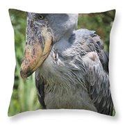 Shoebill Stork Throw Pillow