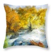 Shohola Falls Autumn Throw Pillow