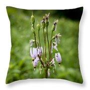 Shooting Star Flower - Wisconsin Throw Pillow