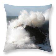 Shore Acres Wave 2 Throw Pillow