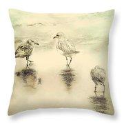 Shore Birds At Sunset Throw Pillow