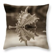 Shore Shell In Sepia Throw Pillow