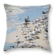 Shorebird Gathering Throw Pillow