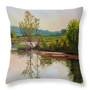 Shoreline At Evening Throw Pillow