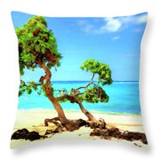 Shoreline At Makalawena Throw Pillow