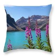 Shoreline Beauties Throw Pillow