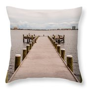 Shoreline View Throw Pillow